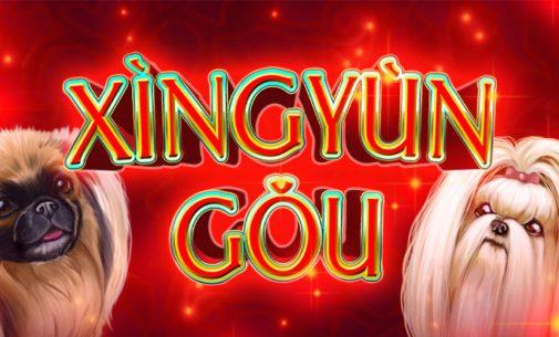XingYun Gou